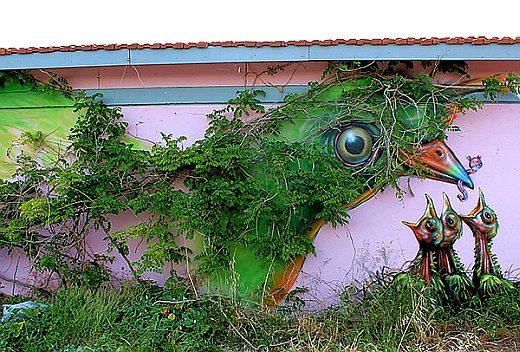 Городские голуби – граффити
