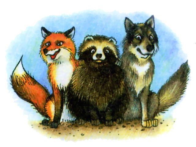 Енотовидная собака и его родня - волки и лисы, рисунок