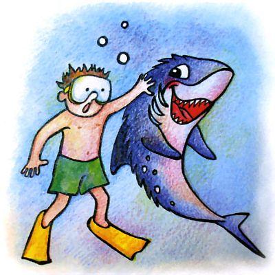 Можно ли погладить акулу?