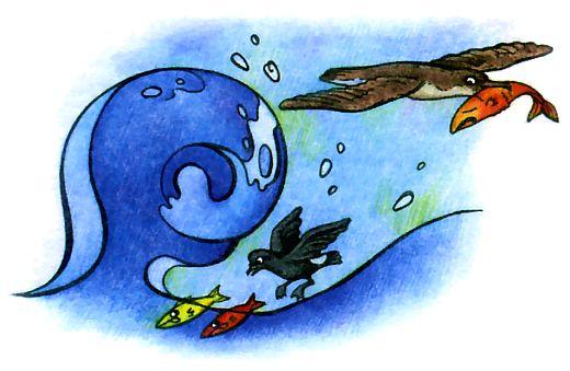 Родственник птицы буревестника – прямохвостая качурка.