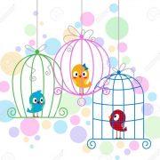 певчие птицы, чижик рисунок