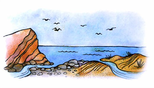 Как образовались галечные и песчаные пляжи на черноморском побережье