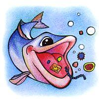Что за рыбка хамса