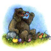 Кавказские бурые медведи