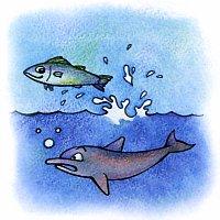 кефаль и дельфин
