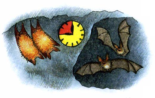 картинки летучие мыши