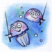 Медузы, обитающие в Черном море