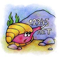 Как определить возраст ракушки моллюска
