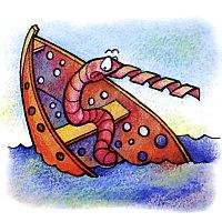 У кого моллюска в Черном море сверло на носу