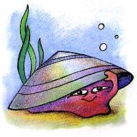 Какой моллюск ходит в раковине