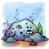 моллюски черного моря - картинки