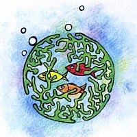 Откуда берется морская тина?
