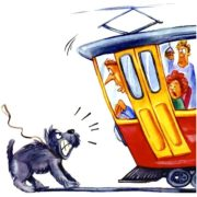 Смешные картинки про трамвай