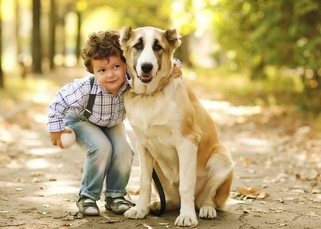 Правда, что собаку нужно выбирать по знаку зодиака.