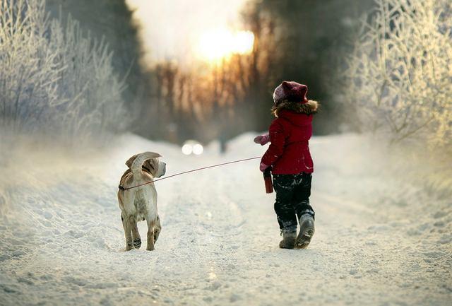 Правда что собаку нужно выбирать по знаку зодиака