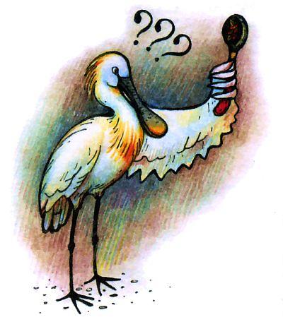 Зачем цапле - колпице ложка на клюве?