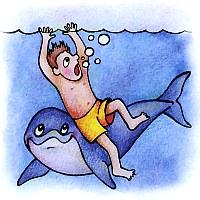 Почему дельфины относятся к людям дружелюбно