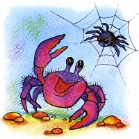 Почему мраморного краба называют пауком