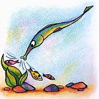 рыба-игла - родственник морского конька