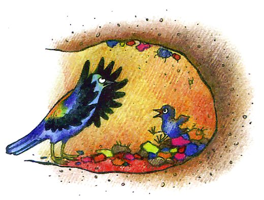 Птица сизоворонок