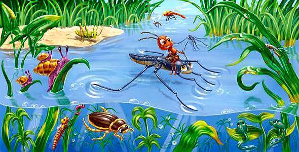 Правда, что насекомые — самые многочисленные животные на Земле?