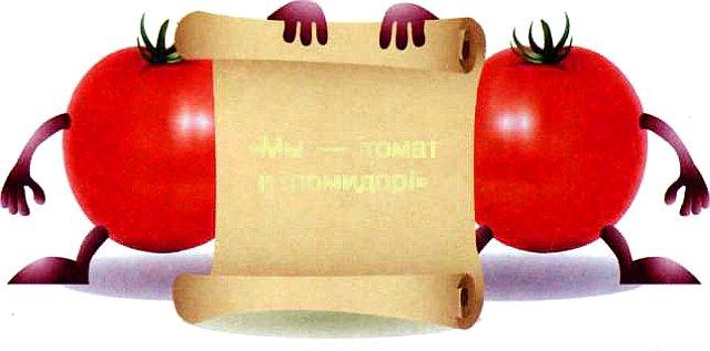 Правда, что томат и помидор - «родственники»?