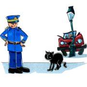 Правда, что черная кошка вестник неудачи?