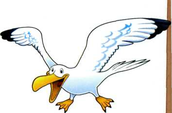 веселые картинки - альбатрос