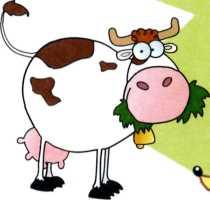 Про коров