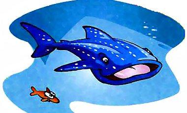самая большая рыба- китовая акула