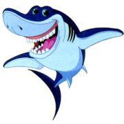 Как питаются акулы