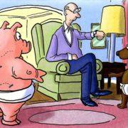 Смешные картинки - борьба сумо