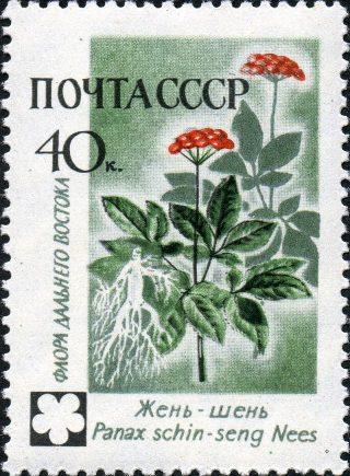 Марка почты СССР - Жень-шень