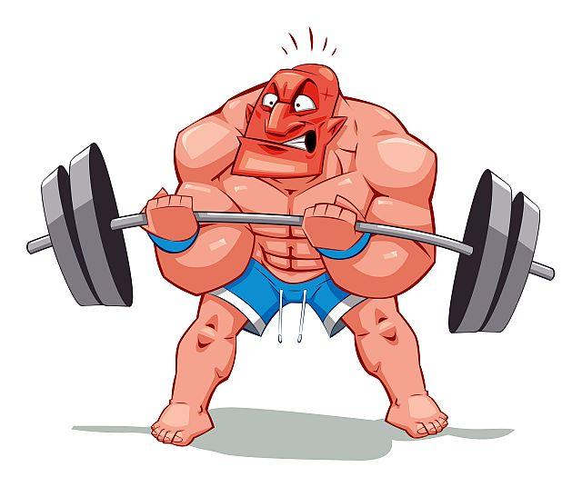 какая самая сильная мышца в человеческом организме