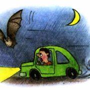 картинки нарисованных летучих мышей