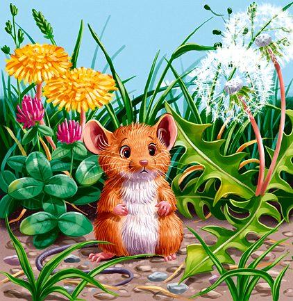 Рассказы про мышей