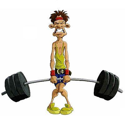 Как работают мышцы человека?